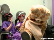 Party in the Salon with The One and Only DANCING BEAR! (db8979)